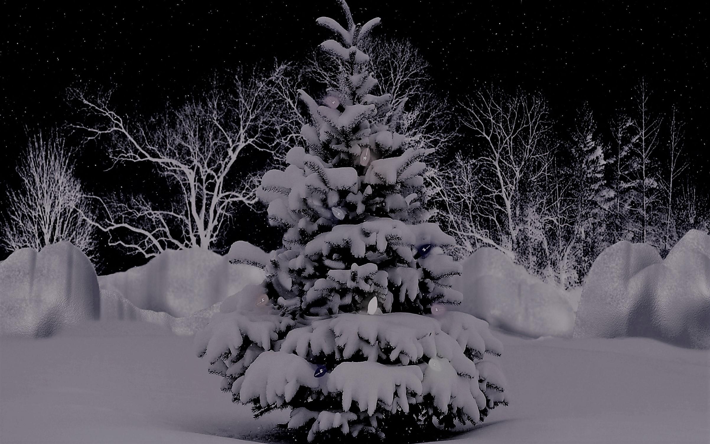 Silent Night, Christmas Song